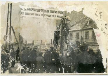 Typhus epidemic in the Warsaw Ghetto