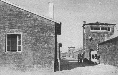 Pamiętamy: KL Warschau (19.07.1943 – 01.08.1944)