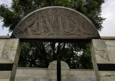 Pamięć drzew. Drzewa jako eko świadkowie historii Muranowa i Mirowa